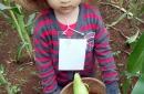 @kuntum Farm field