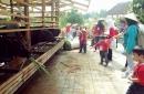 @kuntum farm field 6