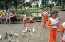 feeding-the-birds-2